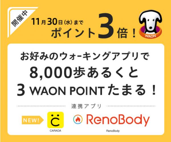 reno-body ポイント3倍