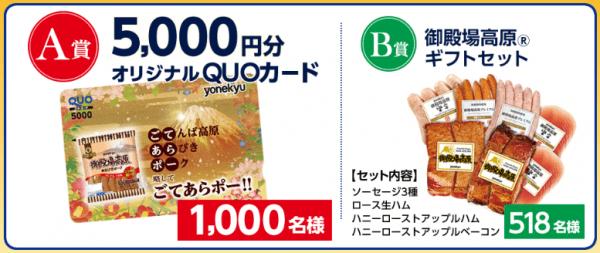 米久 春の5,000円QUOカードが当たる!キャンペーン (2)