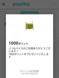paymo (2)