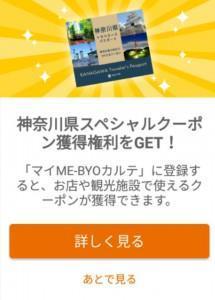 神奈川県トラベラーズパスポート (1)