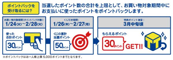 Tポイント ポイントバックくじ (3)