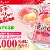 【5万名に当たる!!】LINEで応募! アサヒ贅沢搾り 桃350ml無料クーポンが当たる!キャンペーン