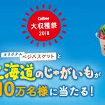 【3年連続当選!!】カルビー大収穫祭2018に当選!