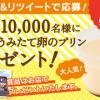 【1万名に当たる!!】シャトレーゼ 無添加うみたて卵のプリンが当たる!キャンペーン
