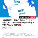 【数量限定!!】QUOカードPay500円分が半額の250円で販売!