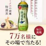 【7万名に当たる!!】綾鷹 特選茶が当たる!キャンペーン