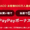 【600名に当たる!!】LOHACO お買い物額相当がPayPayボーナスライトで戻ってくる!キャンペーン