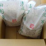 【ふるさと納税】山形県寒河江市から山形産はえぬき10kg届いた!