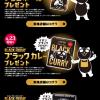 【先着!!】イオン ブラックフライデー限定 チョコボールやブラックカレーがもらえる!キャンペーン