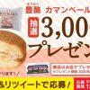 【3,000名に当たる!!】シャトレーゼ 豊酪カマンベール&くるみが当たる!キャンペーン