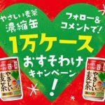 【1万名に当たる!!】やさしい麦茶 濃縮タイプ 1万ケースプレゼント!キャンペーン
