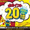 【先着100万名!!】マツモトキヨシ dポイント20倍キャンペーン