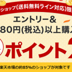 【ポイント2倍!!】3,980円以上購入でポイント2倍!送料無料ライン39キャンペーン