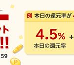 【最大15%還元!!】38時間限定 楽天Rebates ダブルポイントバックキャンペーン