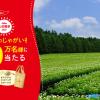 【10万名に当たる!!】カルビー大収穫祭2021開催!